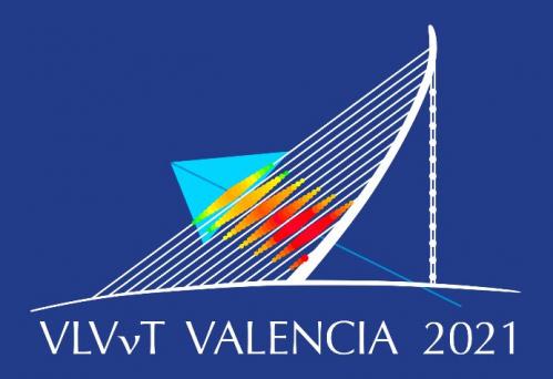 Постер конференции VLVνT